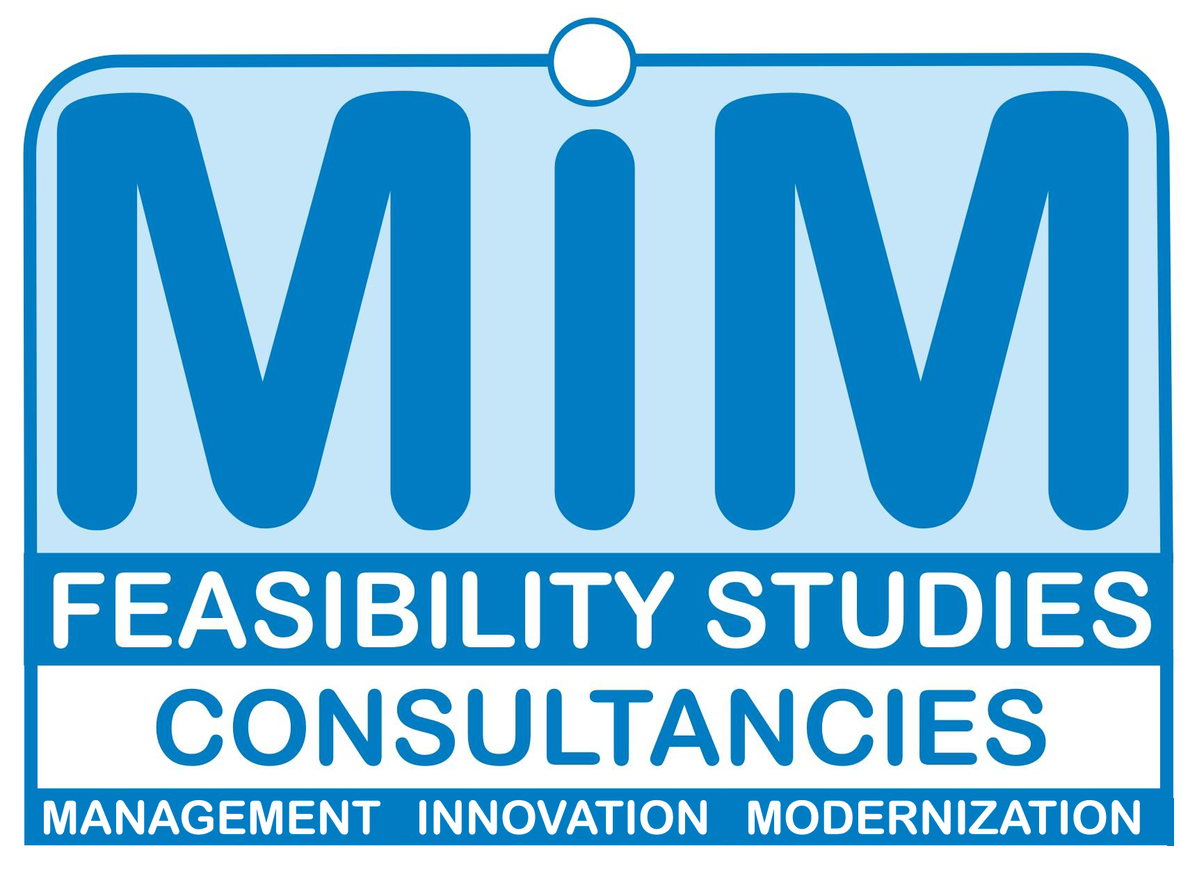 MIM Feasibility Studies Consultancies